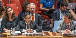 Primer Ministro Rhuggenaath habló duranté Consejo de Seguridad de la ONU