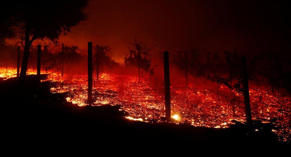Incendios forestales en California dejan pérdidas incalculables