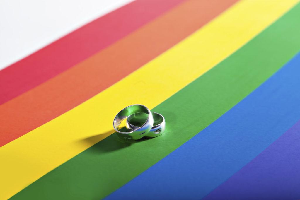 Parlamentarios entregaron proyecto de ley sobre matrimonios homosexuales